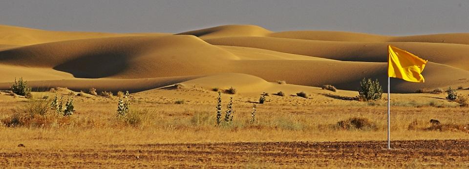 Thar-desert-picture